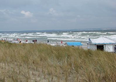 Ostsee Ferienhäuser